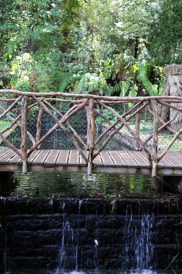 Ma?y Drewniany most Lokalizowa? w drewnach wyspa madera, Portugalia zdjęcie royalty free