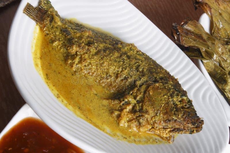 Maacher jhol eller ljus fiskcurry från bengal arkivbilder