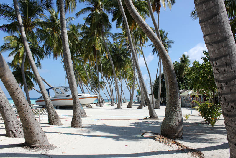 Maafushi-Insel stockfoto