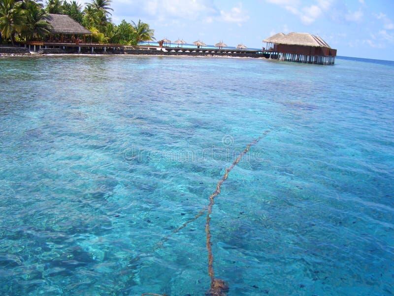Maafushivaru ö - Maldiverna arkivbild