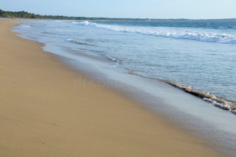 Maagdelijk strand stock fotografie