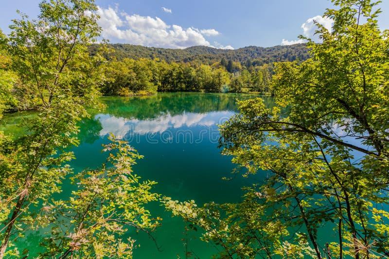Maagdelijke aard van Plitvice-meren nationaal park, Kroatië stock afbeelding