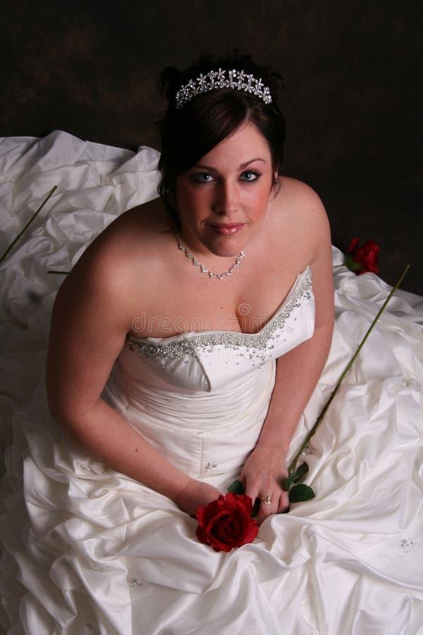 Maagdelijke Bruid stock foto's