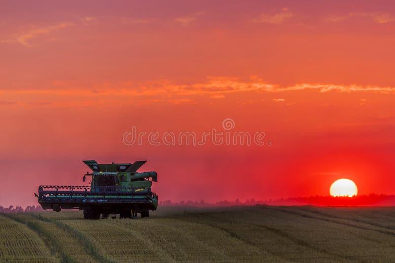 Maaidorser bij zonsondergang stock foto's