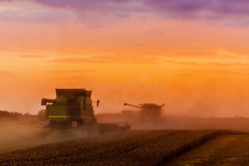 Maaidorser bij zonsondergang stock afbeeldingen