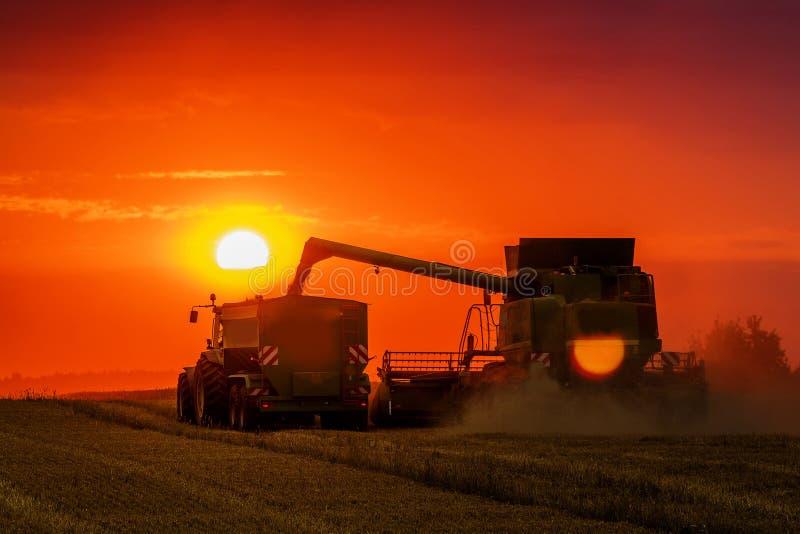 Maaidorser bij zonsondergang stock fotografie