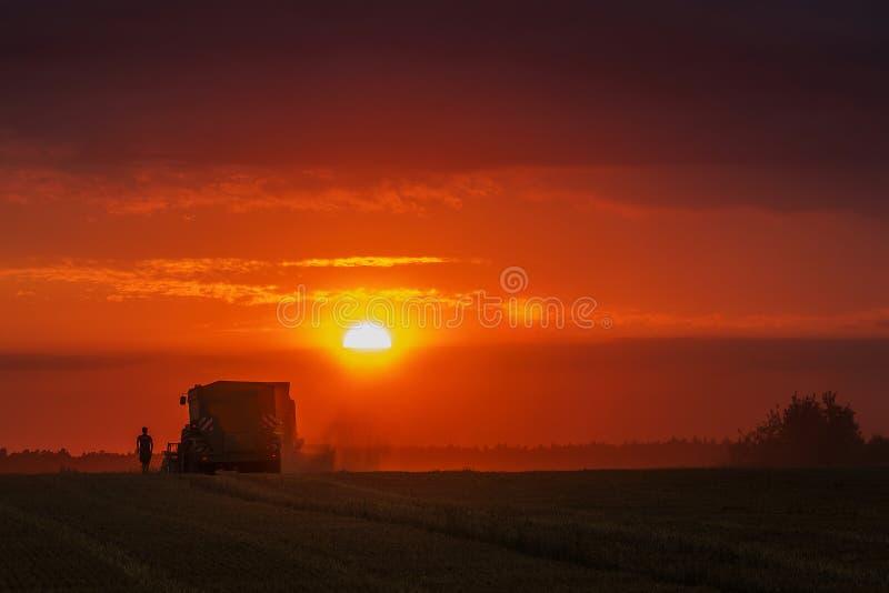 Maaidorser bij zonsondergang stock afbeelding
