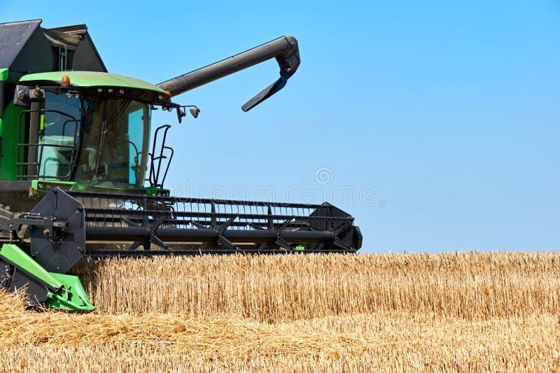 Maaidorsermachine het oogsten tarwe op een gebied stock foto's