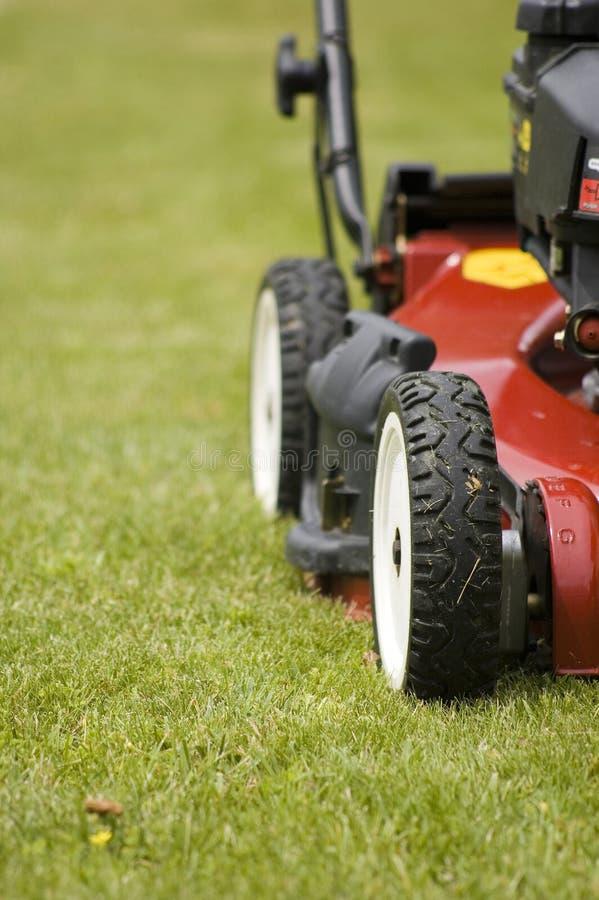 Maaiend gras met grasmaaier stock foto