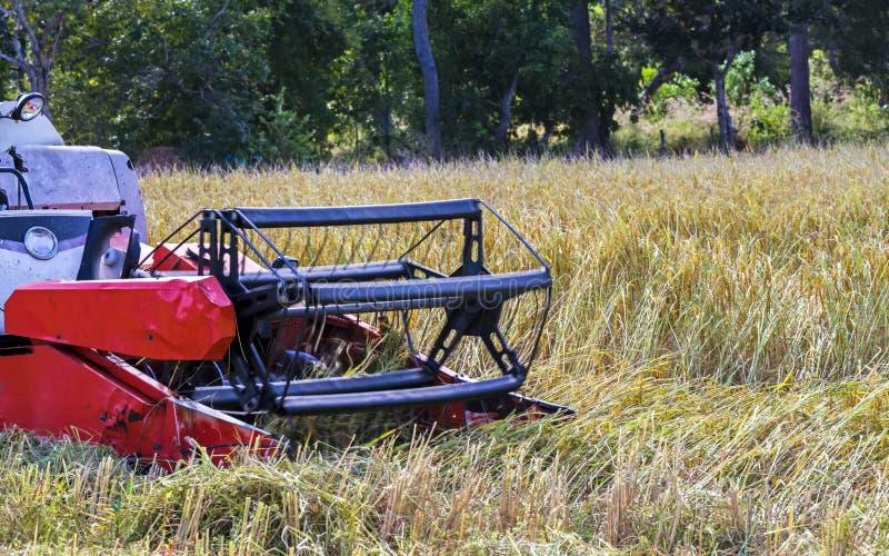 Maaimachinemachine om tarwegebied het werken te oogsten Combineer harves stock fotografie