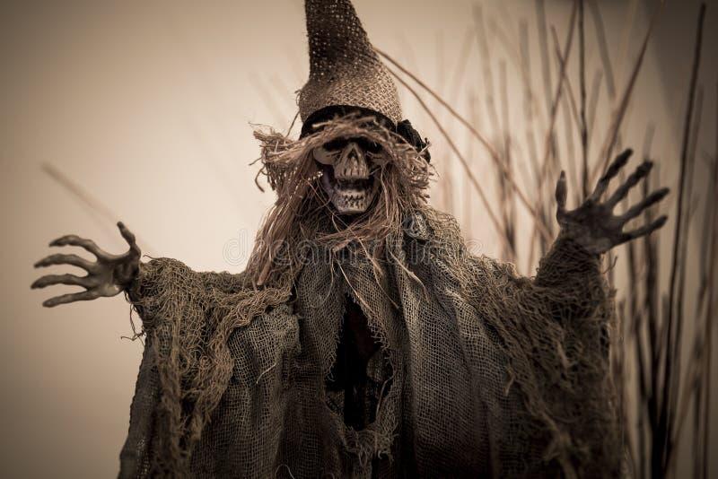 Maak schedel voor Halloween bang royalty-vrije stock foto's