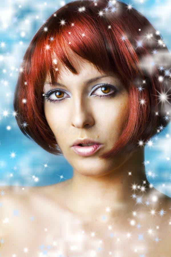 Maakt de natuurlijke schoonheid van de winter omhoog en kuuroord royalty-vrije stock foto's