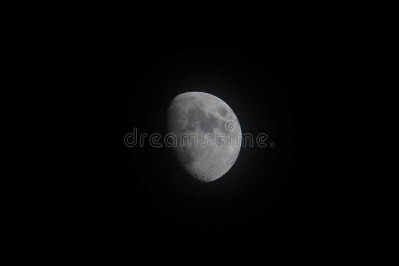 Maan stock fotografie