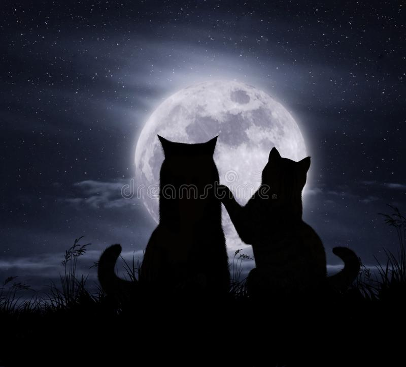 Maan en twee kattenbw royalty-vrije illustratie