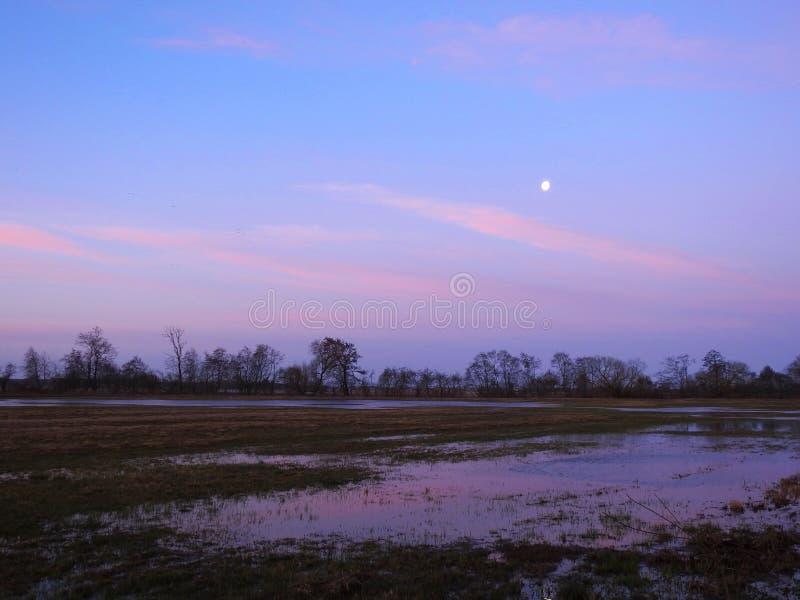 Maan, gebied en kleurrijke hemel in ochtend, Litouwen royalty-vrije stock afbeelding