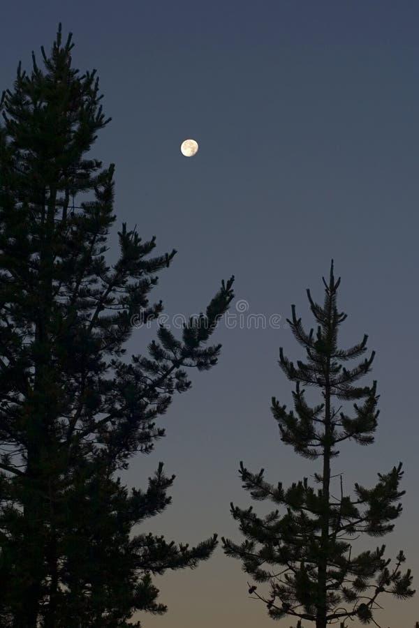 Maan in Noordwesten stock afbeelding
