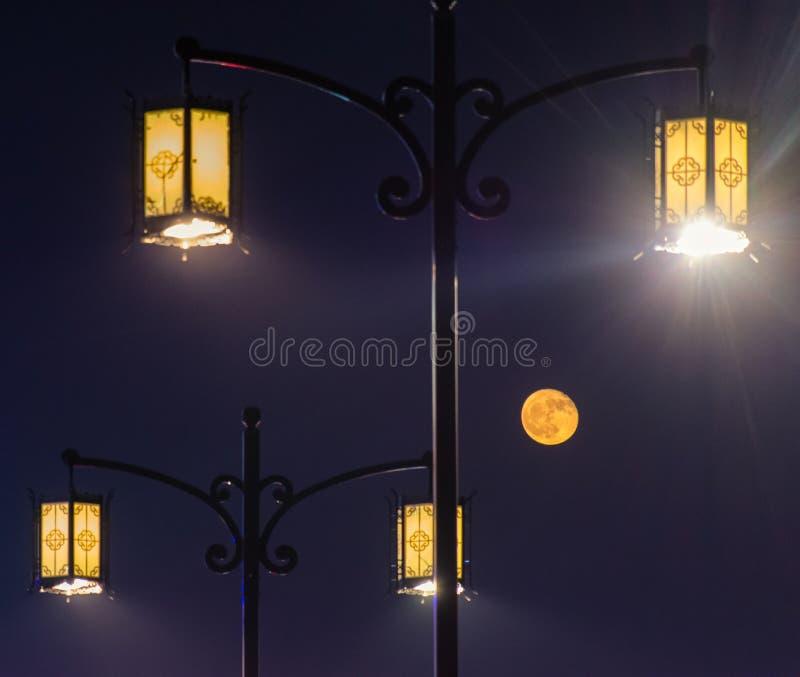 Maan onder de Straatlantaarn stock fotografie