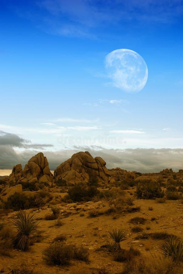 Maan over woestijn royalty-vrije stock afbeelding