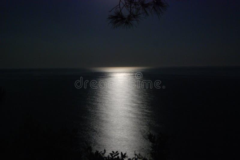Maanbeschenen Nacht bij Sea1 stock foto