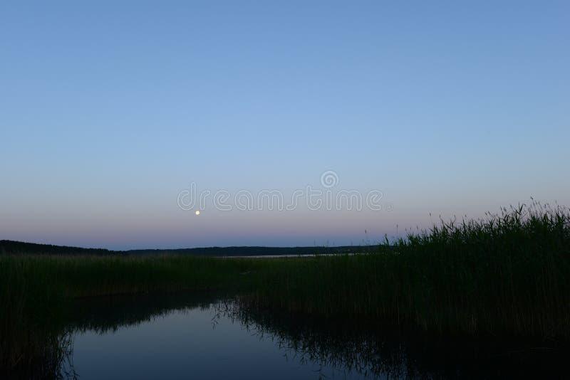 Maanbeschenen witte de zomernacht op het meer stock afbeeldingen