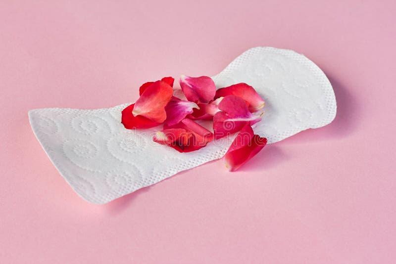 Maandverband en bloembloemblaadjes op roze achtergrond royalty-vrije stock foto's