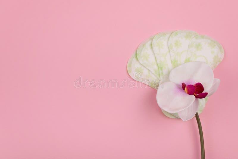 Maandverbanden, Damesslipjevoeringen en orchideebloem op roze achtergrond Vrouwelijke hygi?neproducten stock fotografie