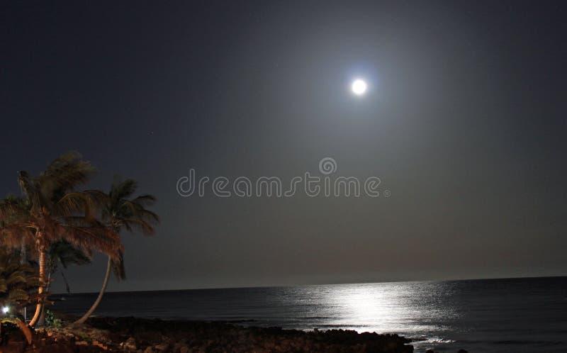 Maanlicht stock afbeelding
