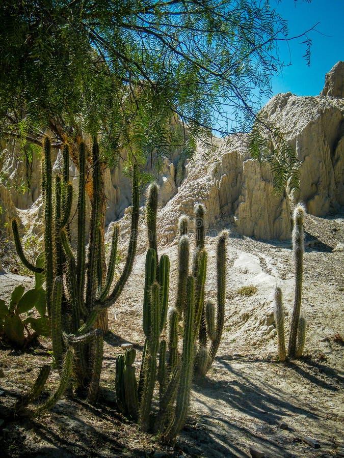 Maanvallei - La Paz - Bolivië royalty-vrije stock afbeeldingen