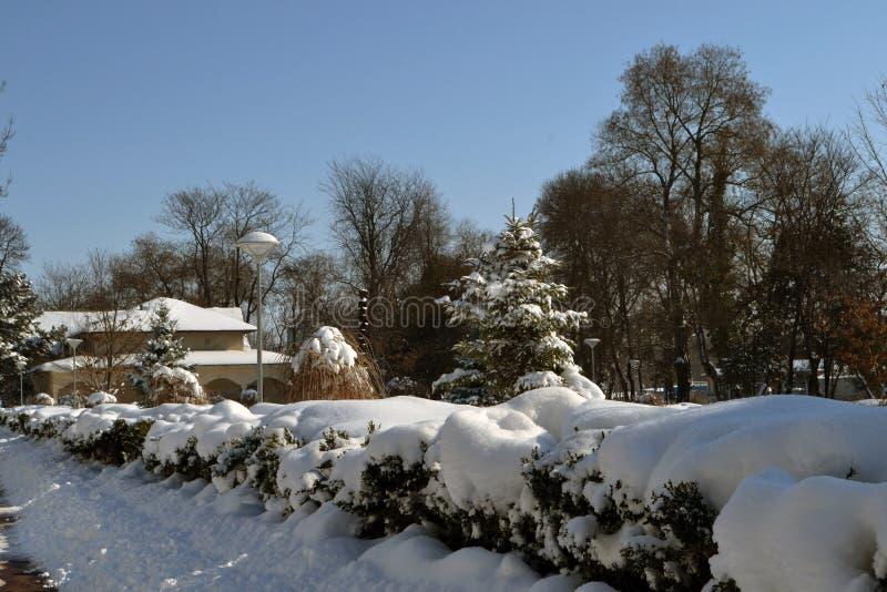 Maart een koud de winterverhaal 4 royalty-vrije stock foto