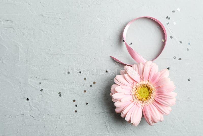 8 Maart, Internationale Vrouwen` s Dag Figuur acht van roze lint met mooie gerbera op grijze achtergrond royalty-vrije stock fotografie