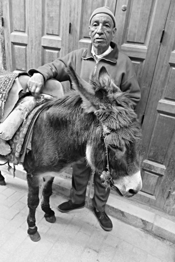 12 maart, 2019 Marokko, Casablanca: Een ingezetene van de stad met zijn uitgeruste ezel in een smalle bazaarstraat stock fotografie
