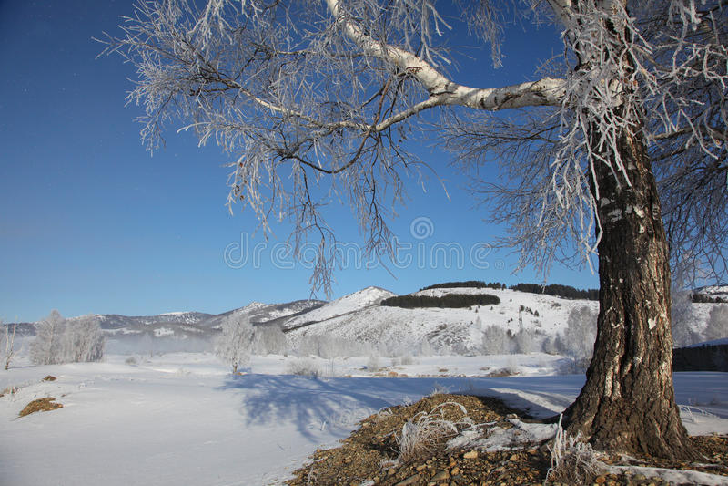 Download Maart-ochtend stock foto. Afbeelding bestaande uit landschappen - 39116340