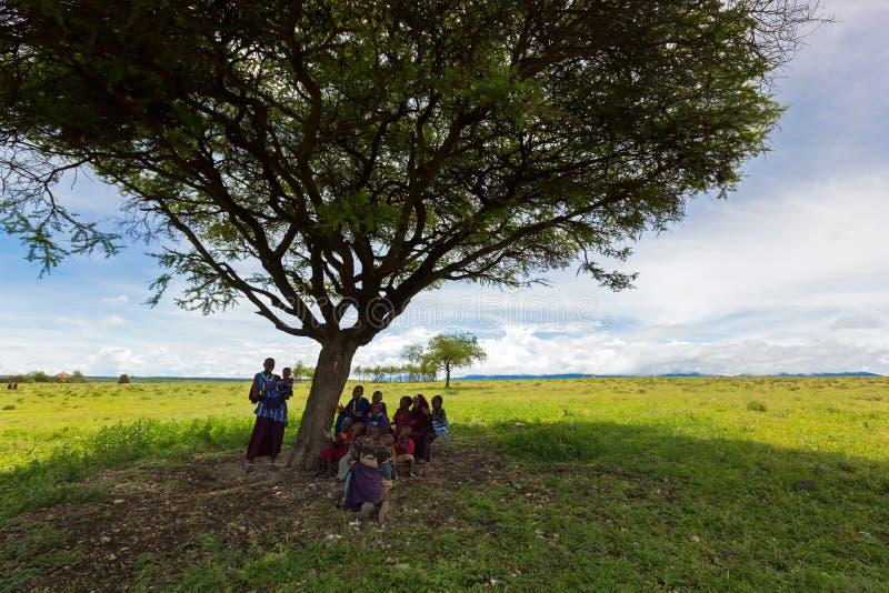 Maasai妇女,教年轻非洲孩子的女老师坐在金合欢树下作为室外学校在坦桑尼亚,东非 免版税库存图片
