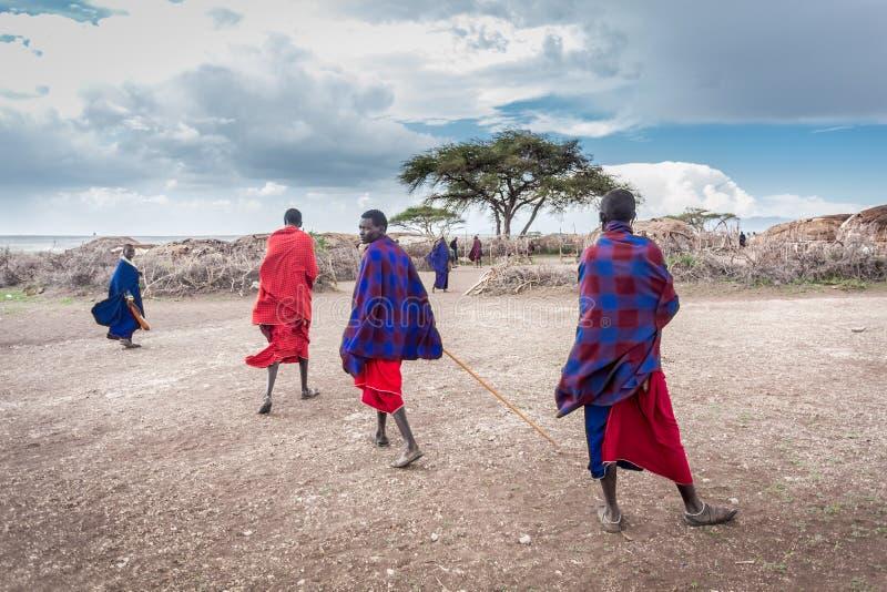 Maasai stock foto