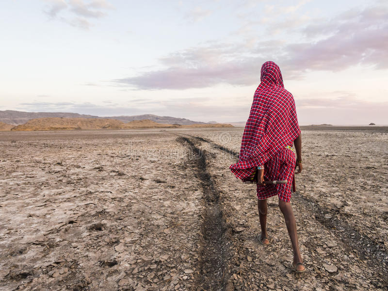 Maasai in Arusha. Maasai guide leading tourists to visit Lake Natron in the north of Tanzania, Africa, at sunrise royalty free stock image