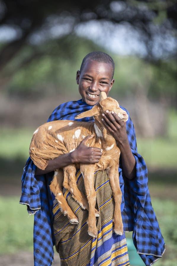 Maasai boy holding a baby goat royalty free stock photo