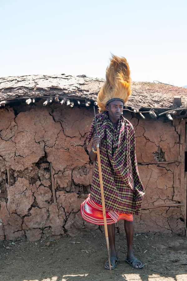 Maasai man, warrior, male lion mane on head, spear in hand, Tanzania stock photos