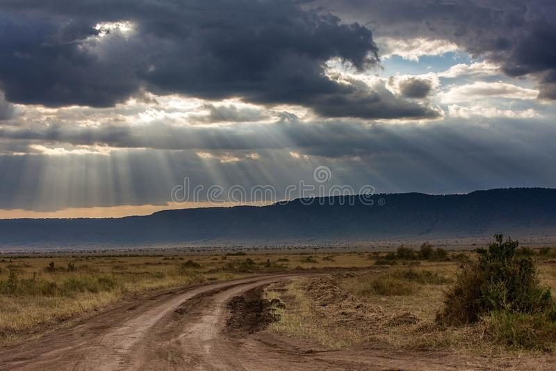 Maasai Mara National Reserve royalty-vrije stock afbeeldingen
