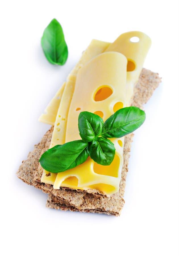 Maasdam在薄脆饼干的乳酪切片与新鲜的蓬蒿 库存照片