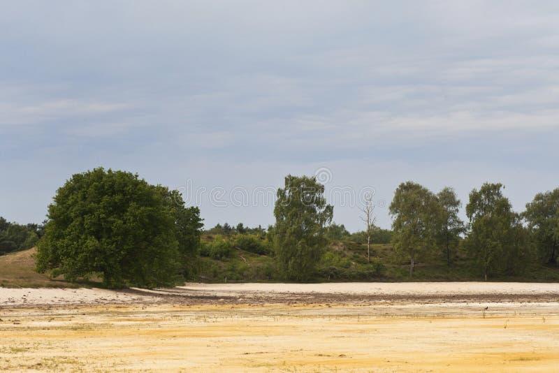 Maasduinen, Limburgo; Maasduinen, Países Bajos imagen de archivo libre de regalías