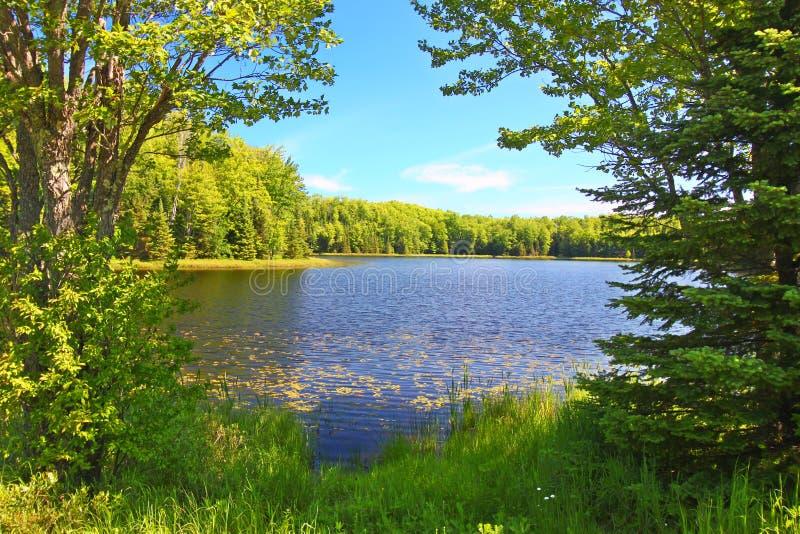 Mabel Jeziorny Northwoods Wisconsin obrazy stock