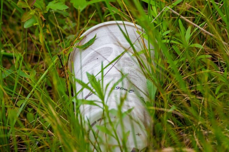 A maca do copo do isopor encontrou com as gramas que crescem em torno dela na pradaria da área dos animais selvagens dos prados d fotografia de stock
