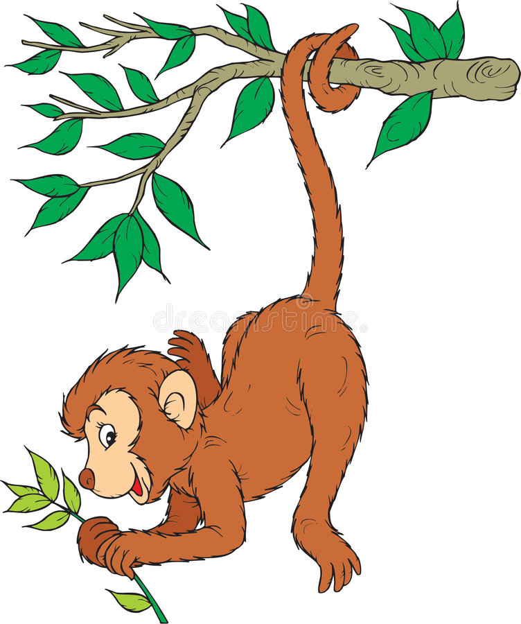 Macaco ilustração do vetor