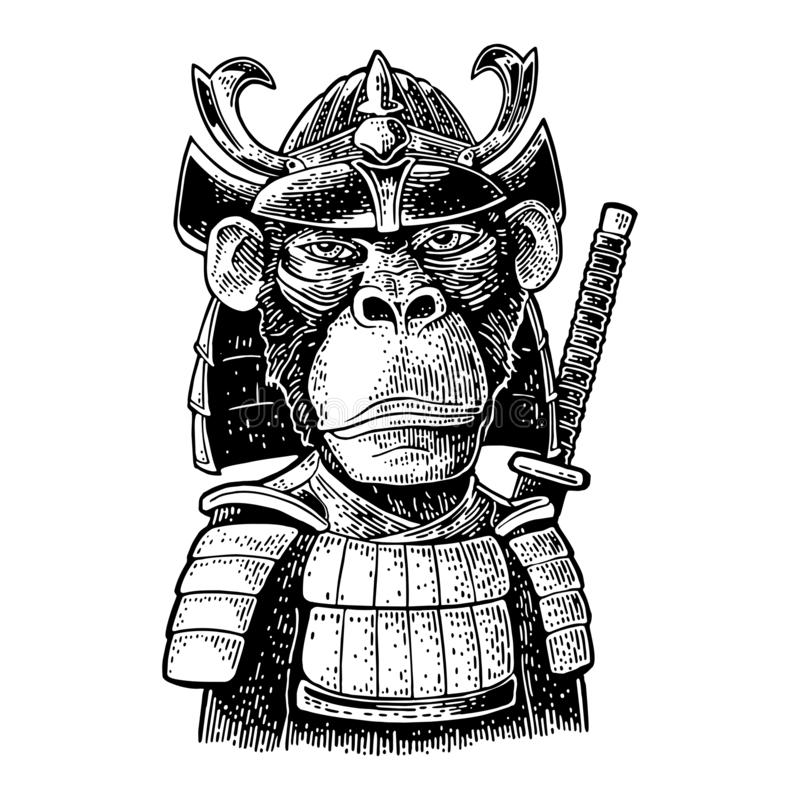 Macaco com espada do samurai e armadura de japão Gravura preta do vintage ilustração royalty free