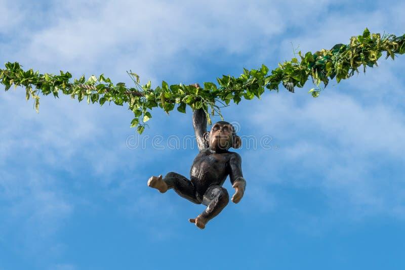 Macaco de suspensão em uma corda em um festival popular imagem de stock