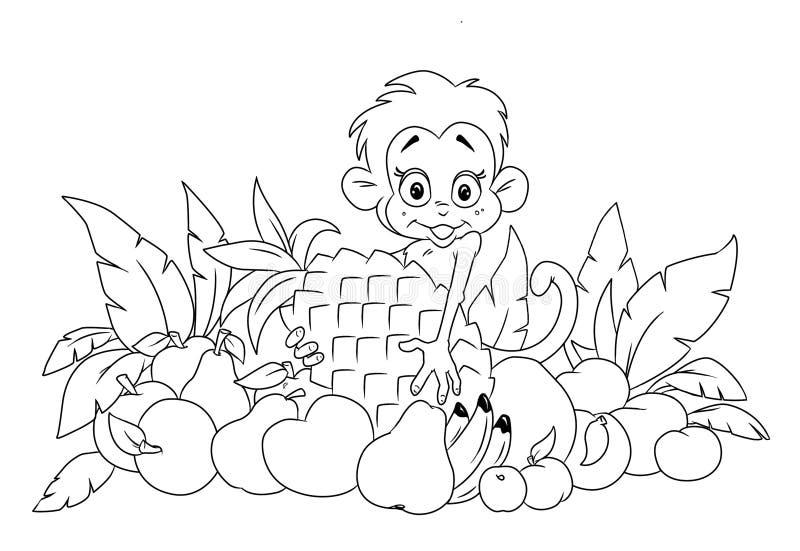 Macaco E Fruta Fotografia de Stock