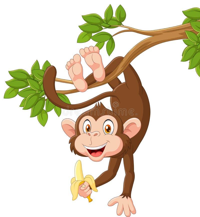 Macaco feliz dos desenhos animados que pendura e que guarda a banana ilustração do vetor
