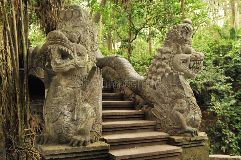 Macaco Forest Sanctuary em Bali imagens de stock