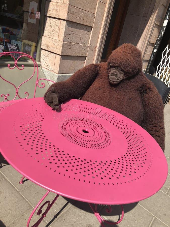 Macaco grande do brinquedo fotos de stock royalty free
