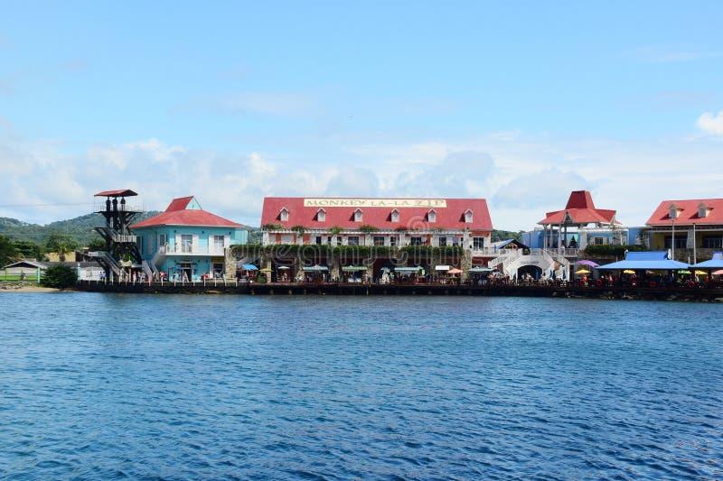Macaco LaLa Zip Hotel In Honduras fotografia de stock